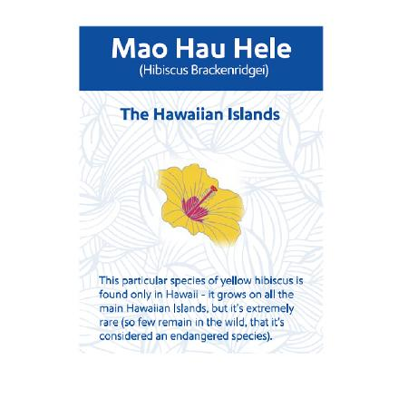 Hawaii State Flower Pin